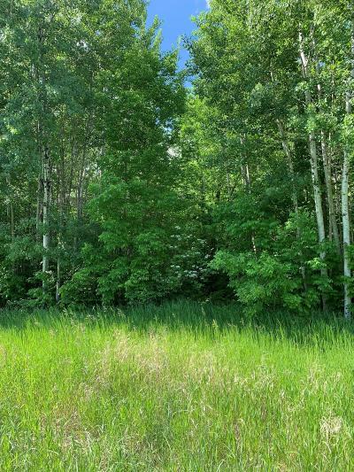 Residential Lots & Land For Sale: N Blackduck Lake Road NE