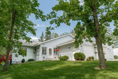 Bemidji Single Family Home For Sale: 3167 Birchmont Drive NE