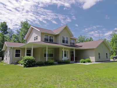 Bemidji Single Family Home For Sale: 49711 Tallwood Trail