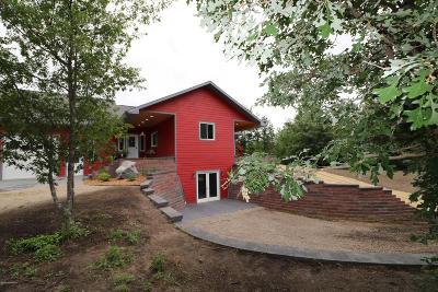 Bemidji Single Family Home For Sale: 1575 Wolf Lake Drive