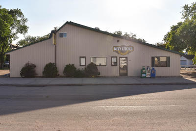 Thief River Falls MN Commercial For Sale: $350,000