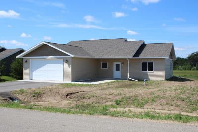 Bemidji Single Family Home For Sale: 2008 Whiting Road NW