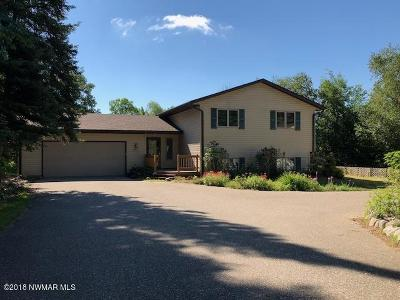 Bemidji Single Family Home For Sale: 16780 Turtle Estates Court NW