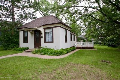 Bemidji Single Family Home For Sale: 1006 Beltrami Avenue N