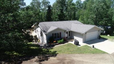 Bemidji Single Family Home For Sale: 12517 Parkwood Lane NW