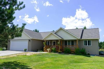 Bemidji Single Family Home For Sale: 740 Shelby Drive NE