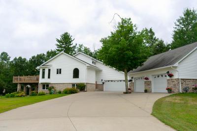 Bemidji Single Family Home For Sale: 319 Majestic Pines Lane NW