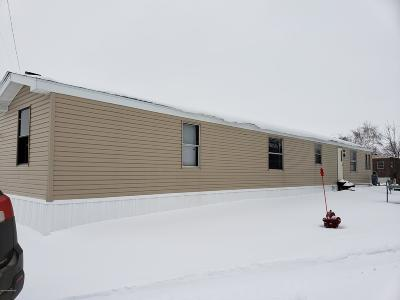 Thief River Falls Single Family Home For Sale: 522 Greenwood Street E