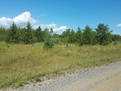 Residential Lots & Land For Sale: Town Road 112 Road