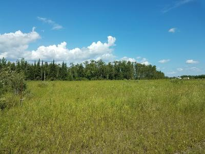 Residential Lots & Land For Sale: Town Rd 112 Road
