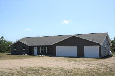 Bemidji Single Family Home For Sale: 5950 Sullivan Drive NW