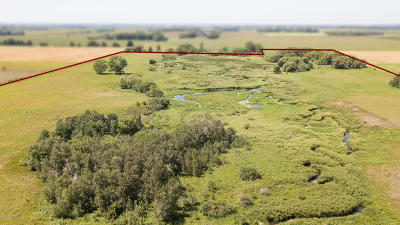 Residential Lots & Land For Sale: Jct-140th Avenue SW & 410th Street SW