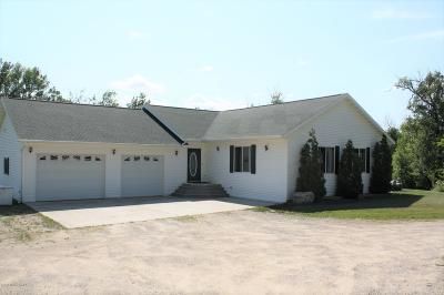 Bemidji Single Family Home For Sale: 18351 Shorewood Court NW