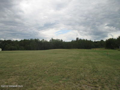 Residential Lots & Land For Sale: Irvine Avenue NW