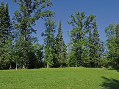 Residential Lots & Land For Sale: 51329 Vagabond Loop