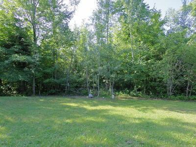 Residential Lots & Land For Sale: 51418 Vagabond Loop