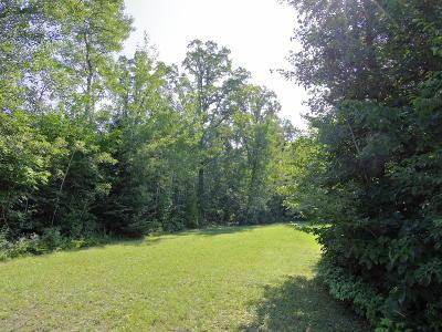 Residential Lots & Land For Sale: 51441 Vagabond Loop