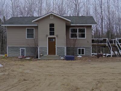 Bemidji Single Family Home For Sale: 14345 Mosey Lane NW