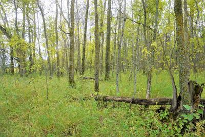 Residential Lots & Land For Sale: Young's Bay Drive NW #Lot 3