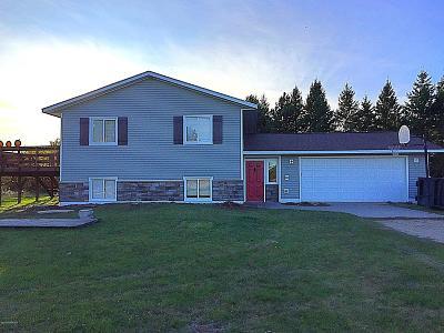 Bemidji Single Family Home For Sale: 10235 Faith Drive NW