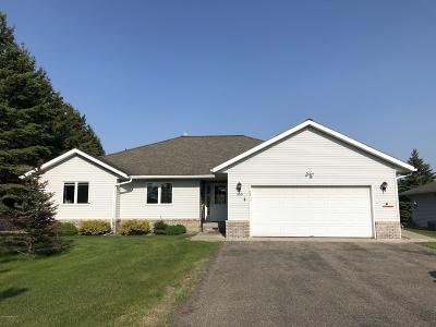 Bemidji Single Family Home For Sale: 3001 Blue Spruce Lane NW