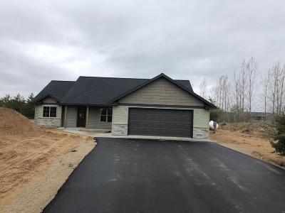Bemidji Single Family Home For Sale: 5710 Smiley Drive NW