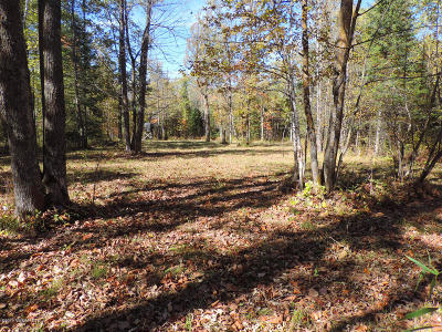 Residential Lots & Land For Sale: Boy Lake Drive NE