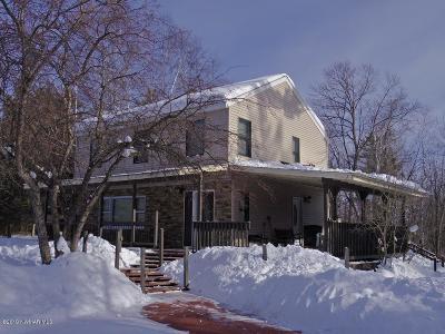 Bemidji Single Family Home For Sale: 24037 County 9 Road