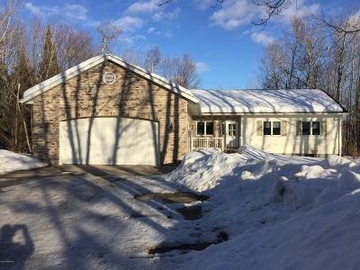 Bemidji Single Family Home For Sale: 155 Quiet Majestic Lane NW