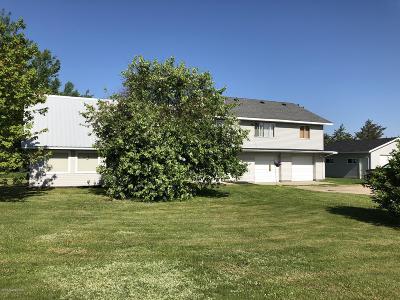Bemidji Single Family Home For Sale: 825 Tyler Avenue SE