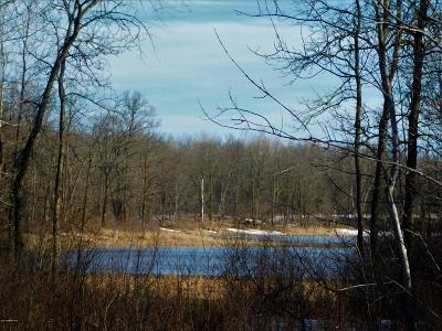 Residential Lots & Land For Sale: Silver Brook Drive