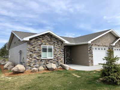 Bemidji MN Condo/Townhouse For Sale: $205,000