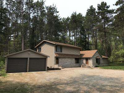 Bemidji Single Family Home For Sale: 1625 Birchmont Beach Road NE