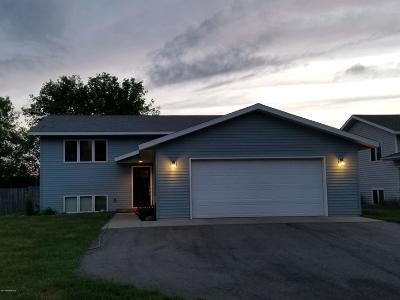 Bemidji Single Family Home For Sale: 107 Gould Avenue NE