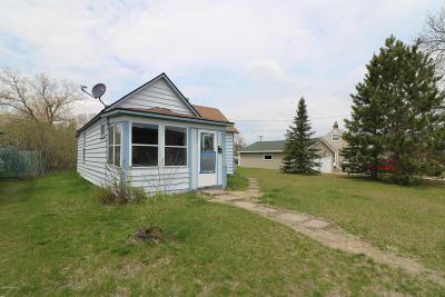 Bemidji Single Family Home For Sale: 413 Lincoln Avenue SE