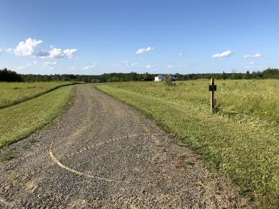 Koochiching County, Saint Louis County, St. Louis County Residential Lots & Land For Sale: 1687 Ut 112 Road