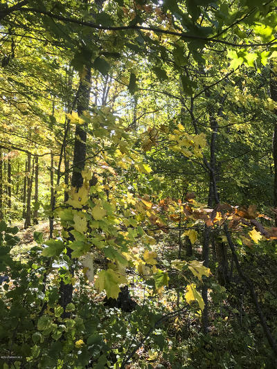 Residential Lots & Land For Sale: Howling Wolf Road NE #Lot 14
