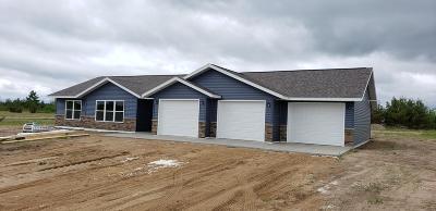 Bemidji Single Family Home For Sale: 6009 Sullivan Drive NW