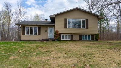 Bemidji Single Family Home For Sale: 48182 Us 71 Highway