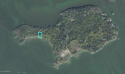 Residential Lots & Land For Sale: 35 Brush Island