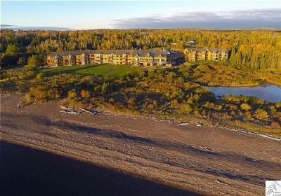 Two Harbors Condo/Townhouse For Sale: 1521 #206 Superior Shores #206