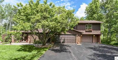 Duluth Single Family Home For Sale: 209 Misquah Rd