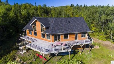 Two Harbors Single Family Home For Sale: 976 Deerview Ln