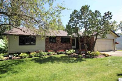 Duluth Single Family Home For Sale: 3812 E Superior St