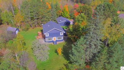 Duluth Single Family Home For Sale: 4109 Martin Rd