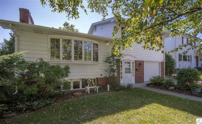 Duluth Single Family Home For Sale: 4124 Dodge St