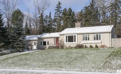 Duluth Single Family Home For Sale: 3411 E Superior St