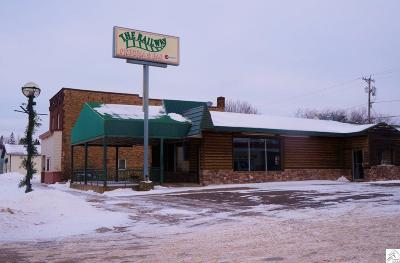 Proctor MN Commercial For Sale: $220,000
