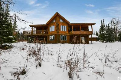 Two Harbors Single Family Home For Sale: 7001 Olson Rd