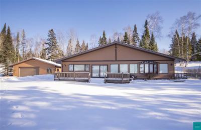 Duluth Single Family Home For Sale: 6767 Abbott Rd